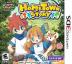 HomeTown Story Box